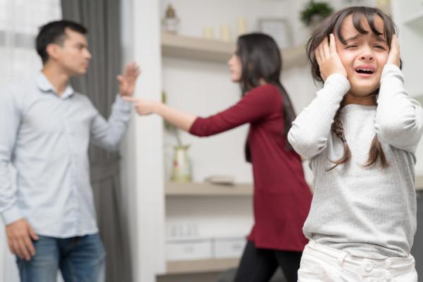 violencia_domestica_que_es_tipos_causas_y_consecuencias_4684_600